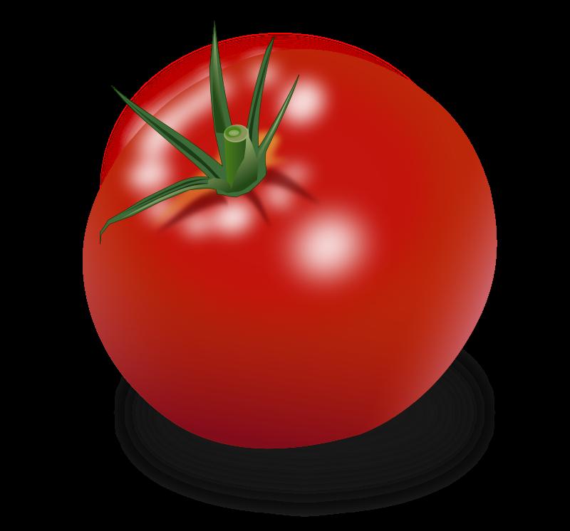 Domates Tomato